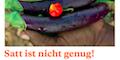 """Einführung zur 57. Aktion """"Satt ist nicht genug!"""" (PDF-Datei)"""